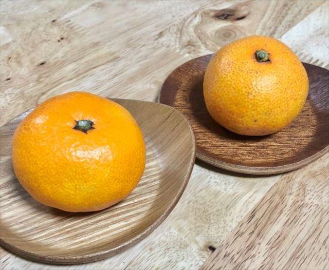 orange2_R
